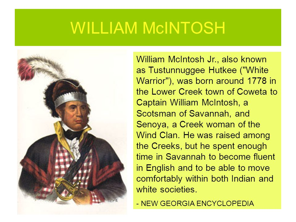 WILLIAM McINTOSH