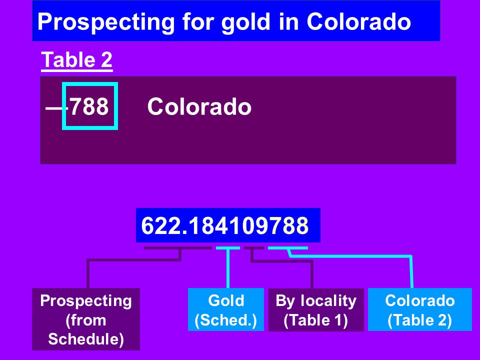 Prospecting for gold in Colorado