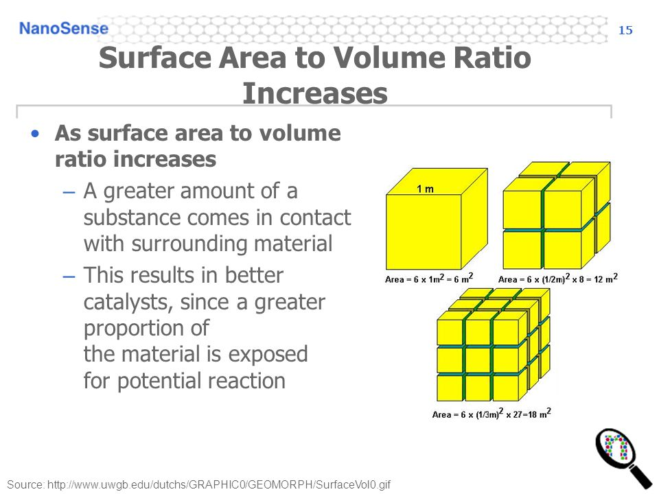 Surface Area to Volume Ratio Increases