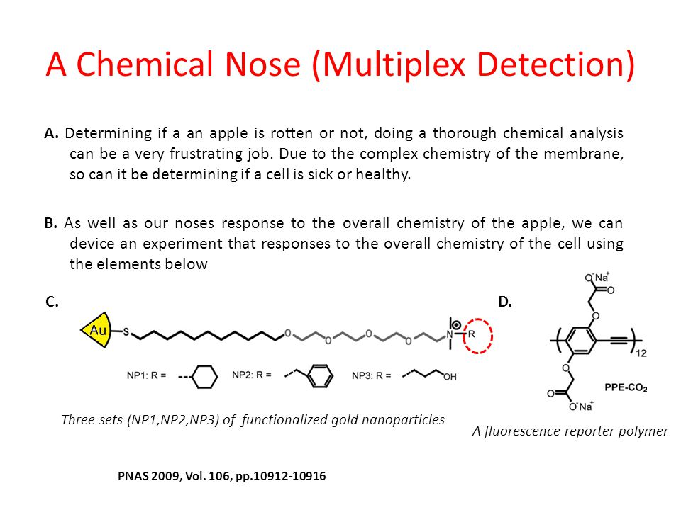 A Chemical Nose (Multiplex Detection)