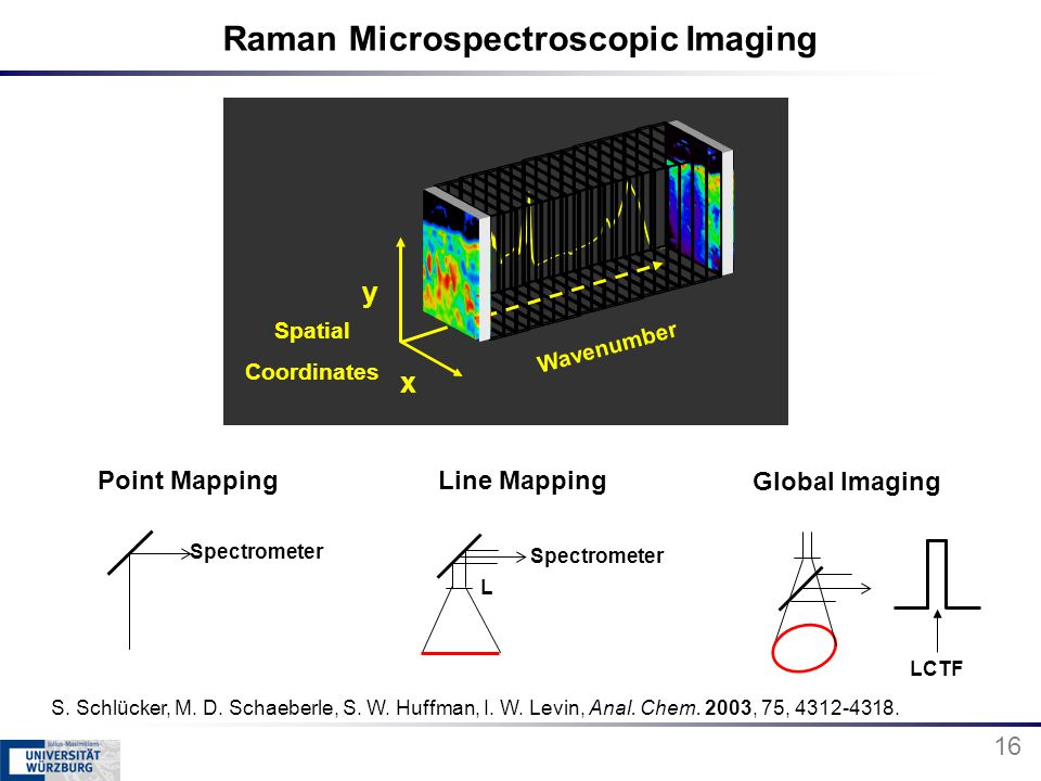 Raman Microspectroscopic Imaging