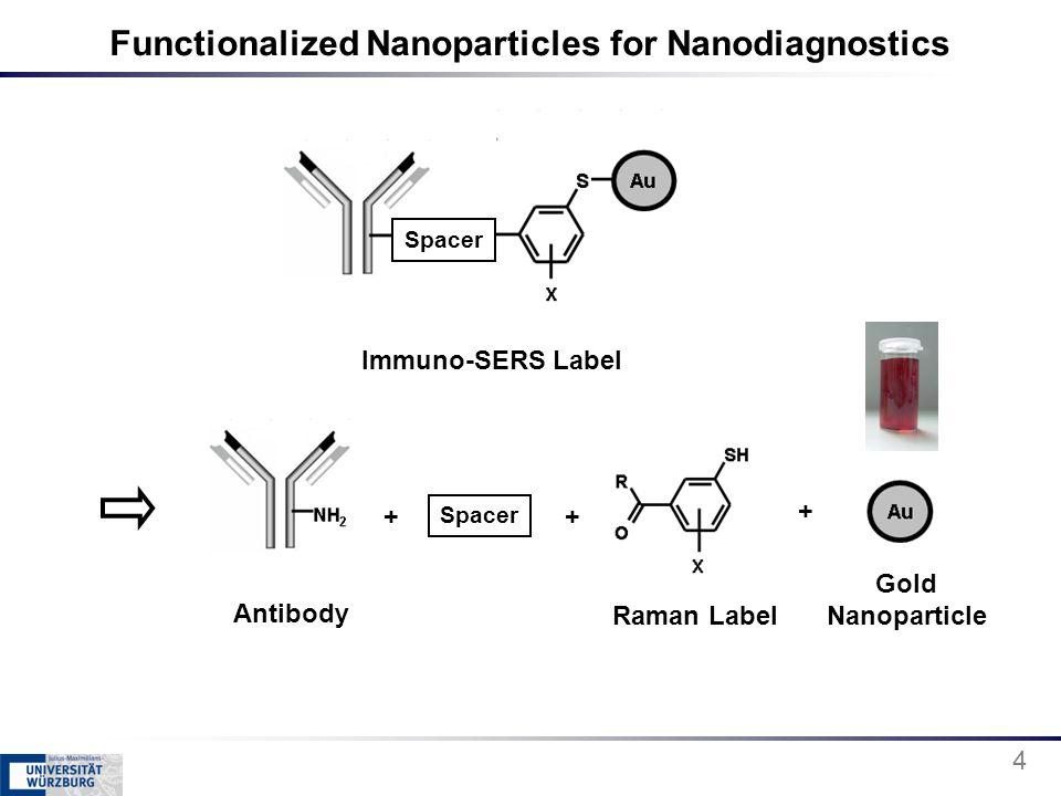 Functionalized Nanoparticles for Nanodiagnostics