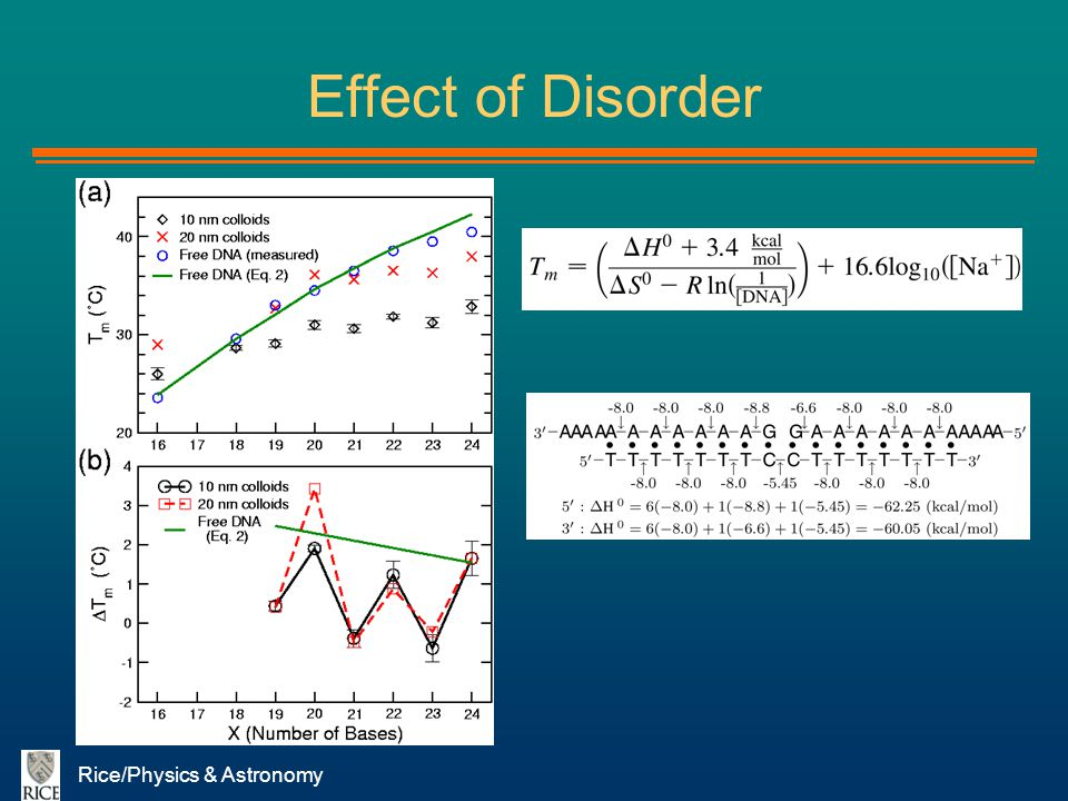 Effect of Disorder Rice/Physics & Astronomy
