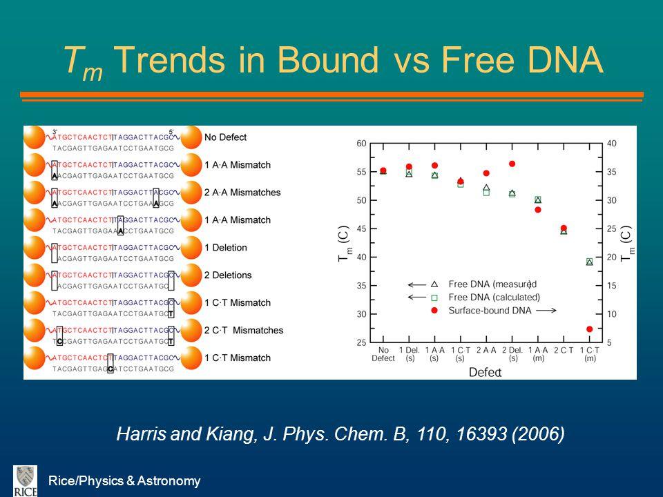 Tm Trends in Bound vs Free DNA