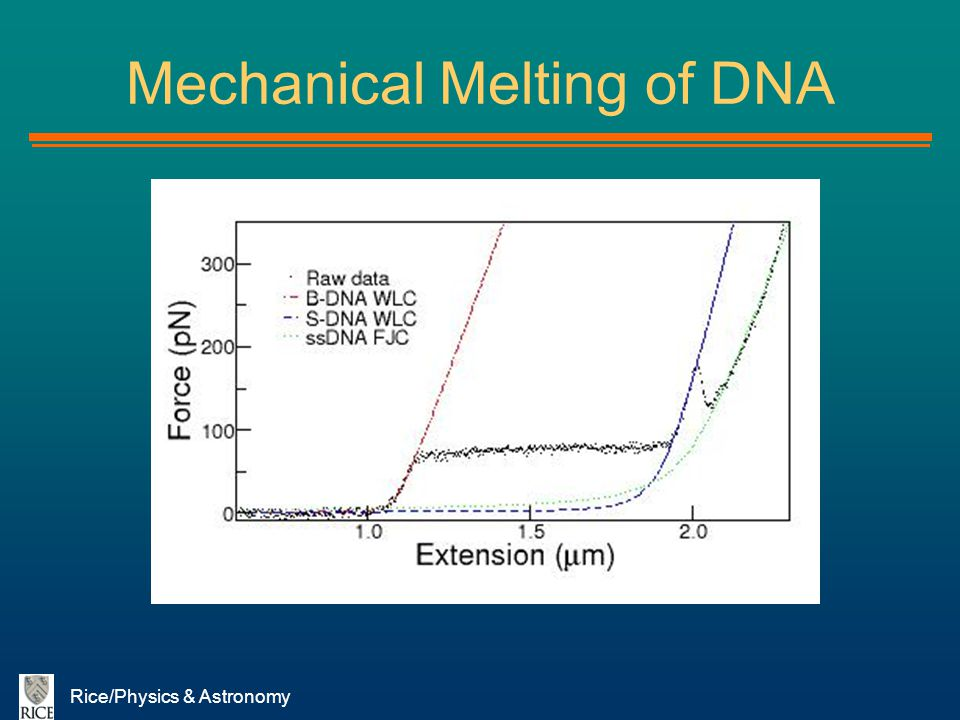 Mechanical Melting of DNA