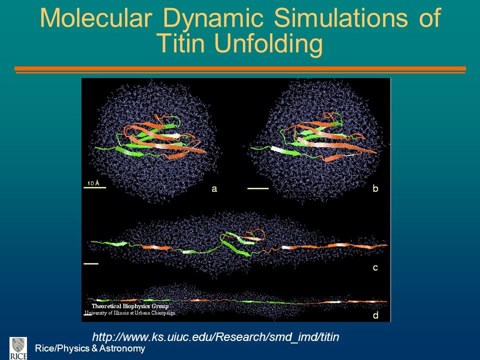 Molecular Dynamic Simulations of Titin Unfolding