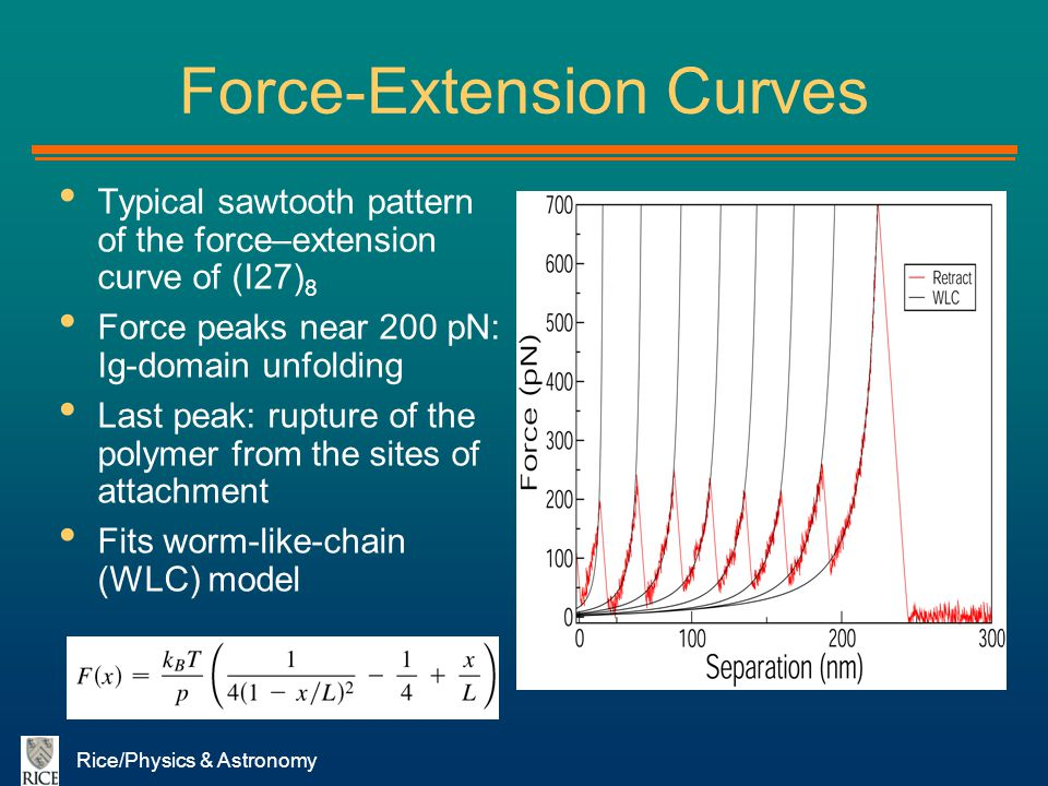 Force-Extension Curves