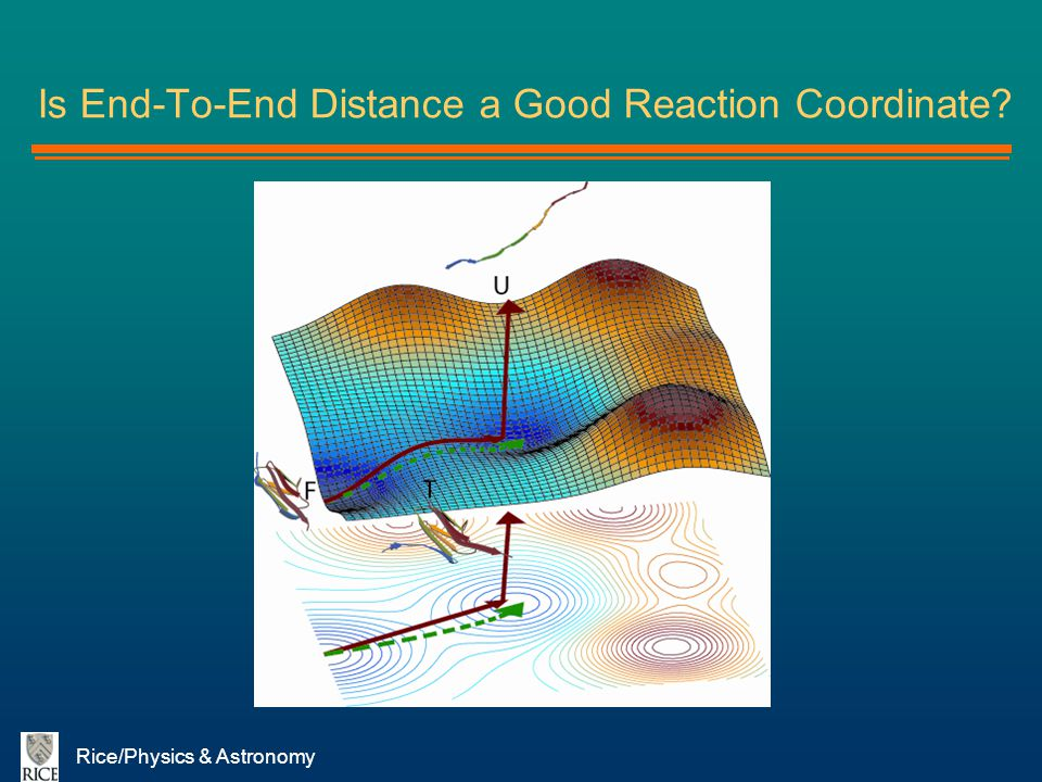 Is End-To-End Distance a Good Reaction Coordinate