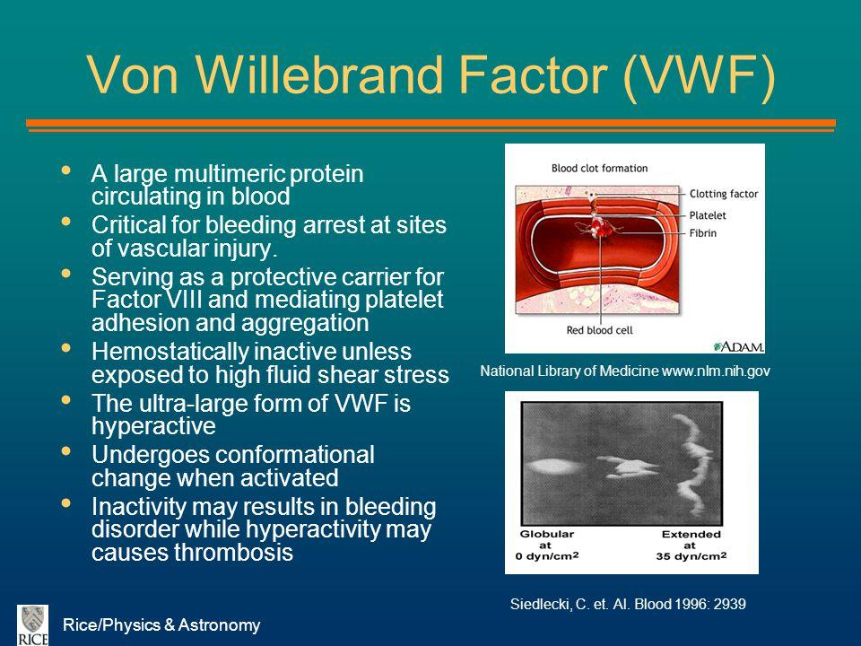 Von Willebrand Factor (VWF)
