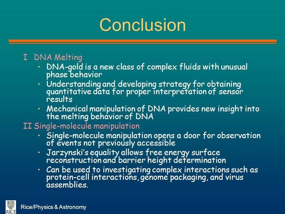 Conclusion I DNA Melting