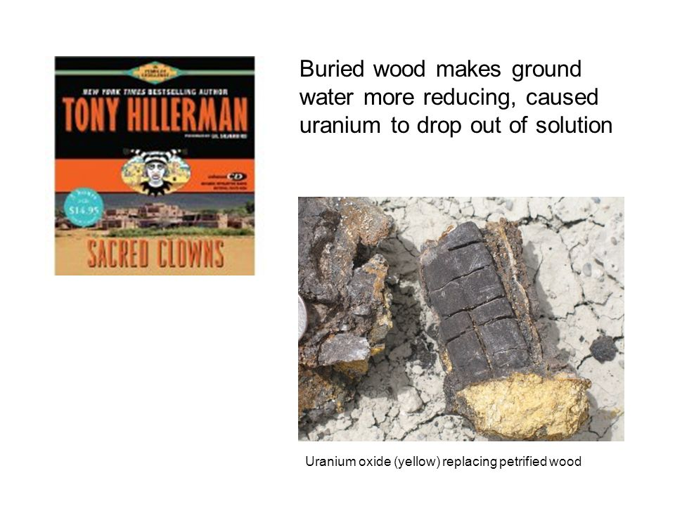 Buried wood makes ground water more reducing, caused uranium to drop out of solution