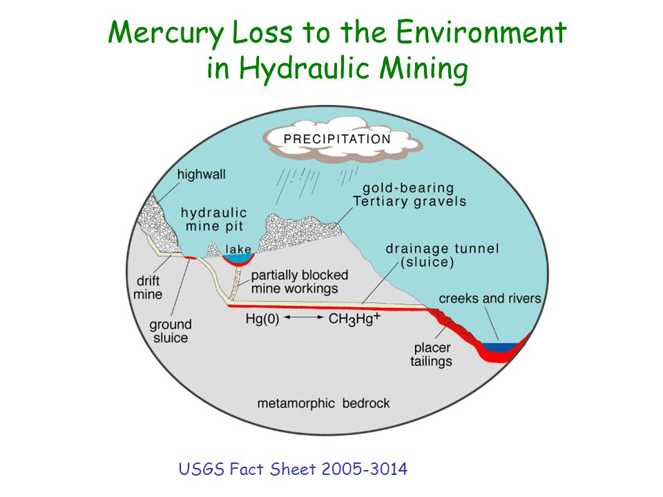 Mercury Loss to the Environment