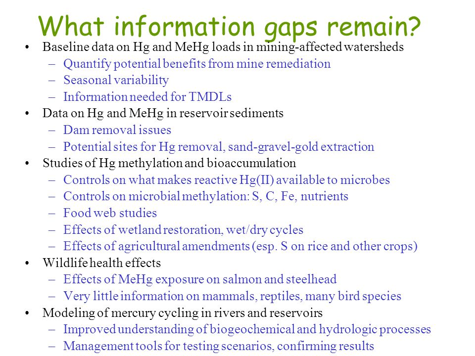 What information gaps remain