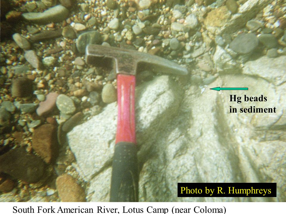 Hg beads in sediment Photo by R. Humphreys South Fork American River, Lotus Camp (near Coloma)