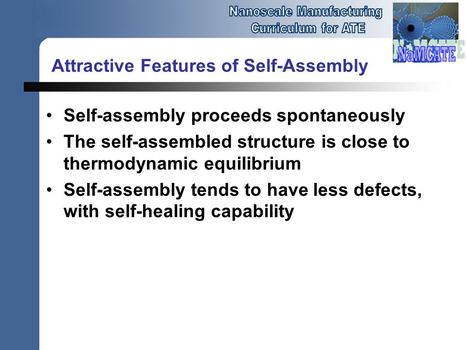Attractive Features of Self-Assembly