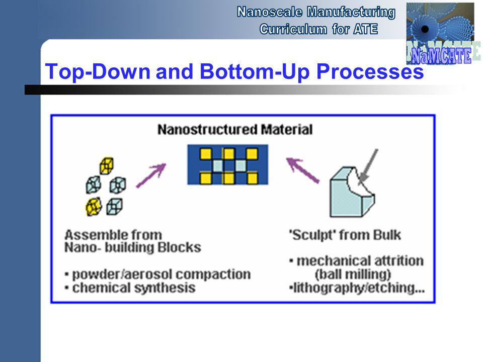 Top-Down and Bottom-Up Processes