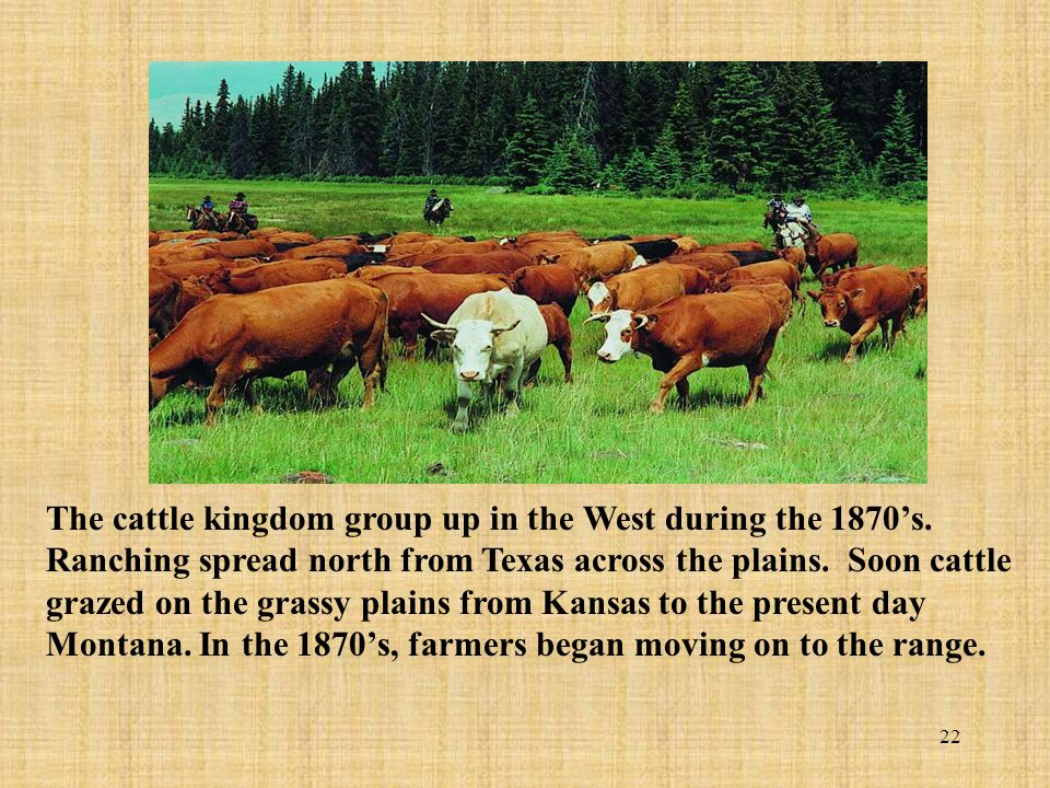 The cattle kingdom group up in the West during the 1870's