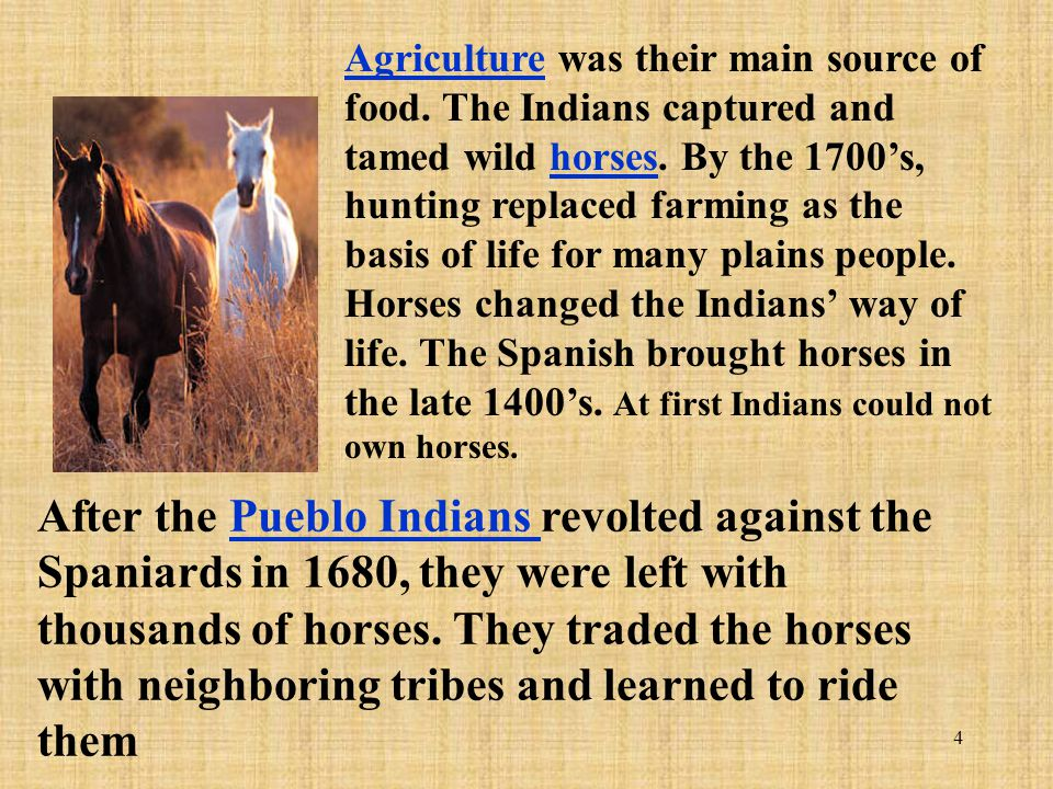Agriculture was their main source of food