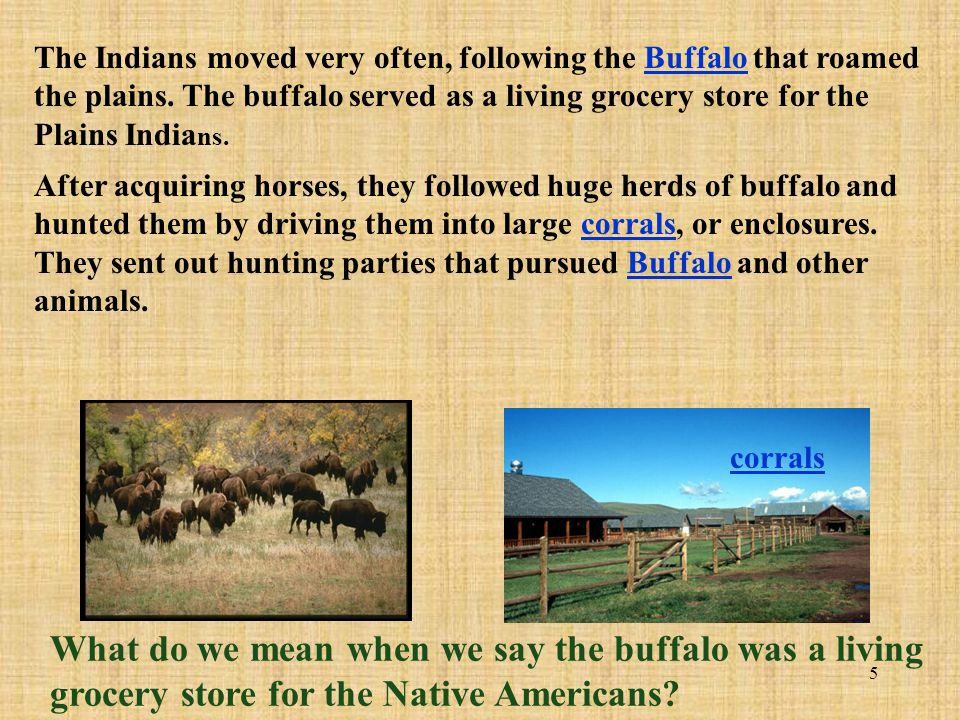 The Indians moved very often, following the Buffalo that roamed the plains. The buffalo served as a living grocery store for the Plains Indians.
