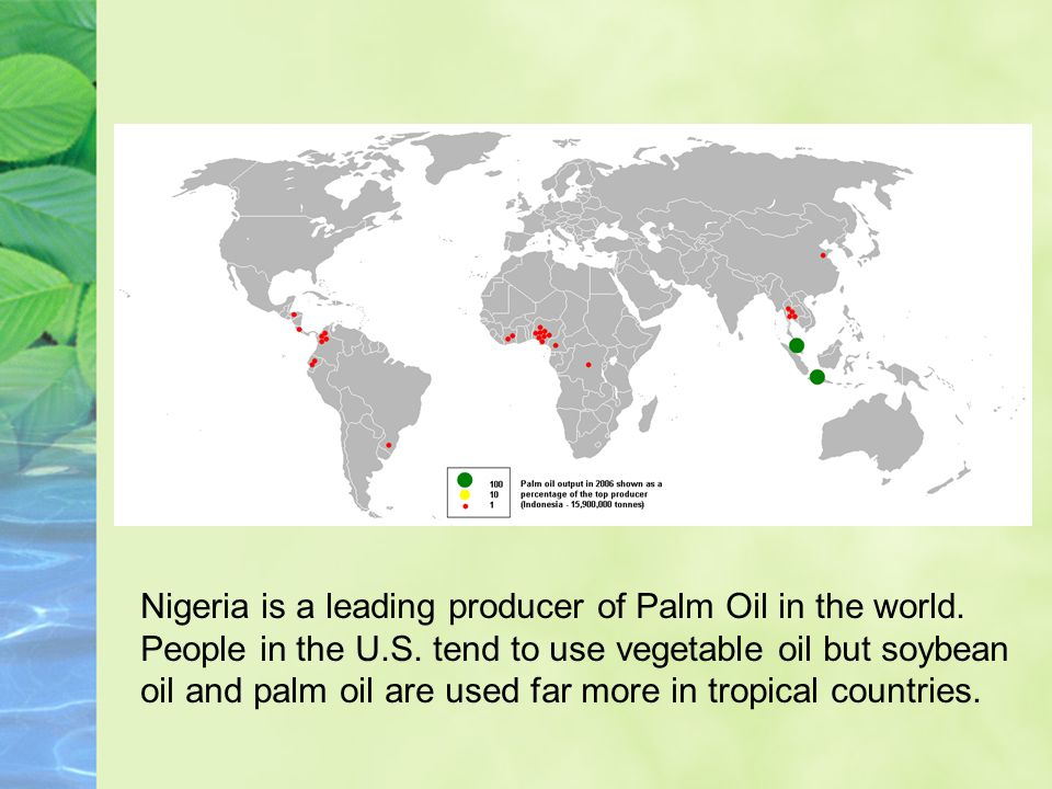 Nigeria is a leading producer of Palm Oil in the world.