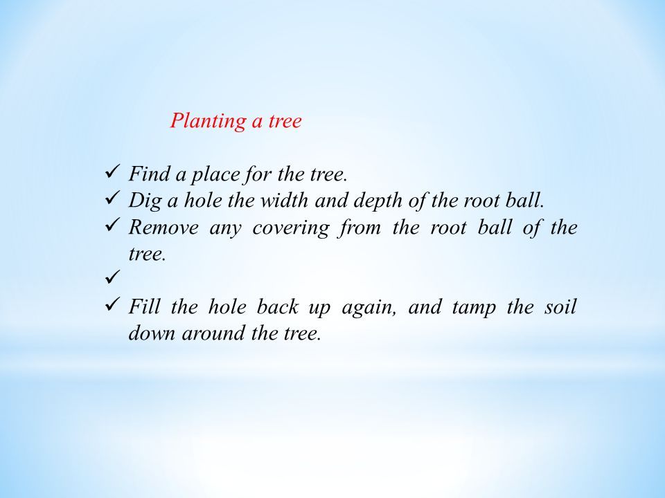 Planting a tree Find a place for the tree. Dig a hole the width and depth of the root ball. Remove any covering from the root ball of the tree.