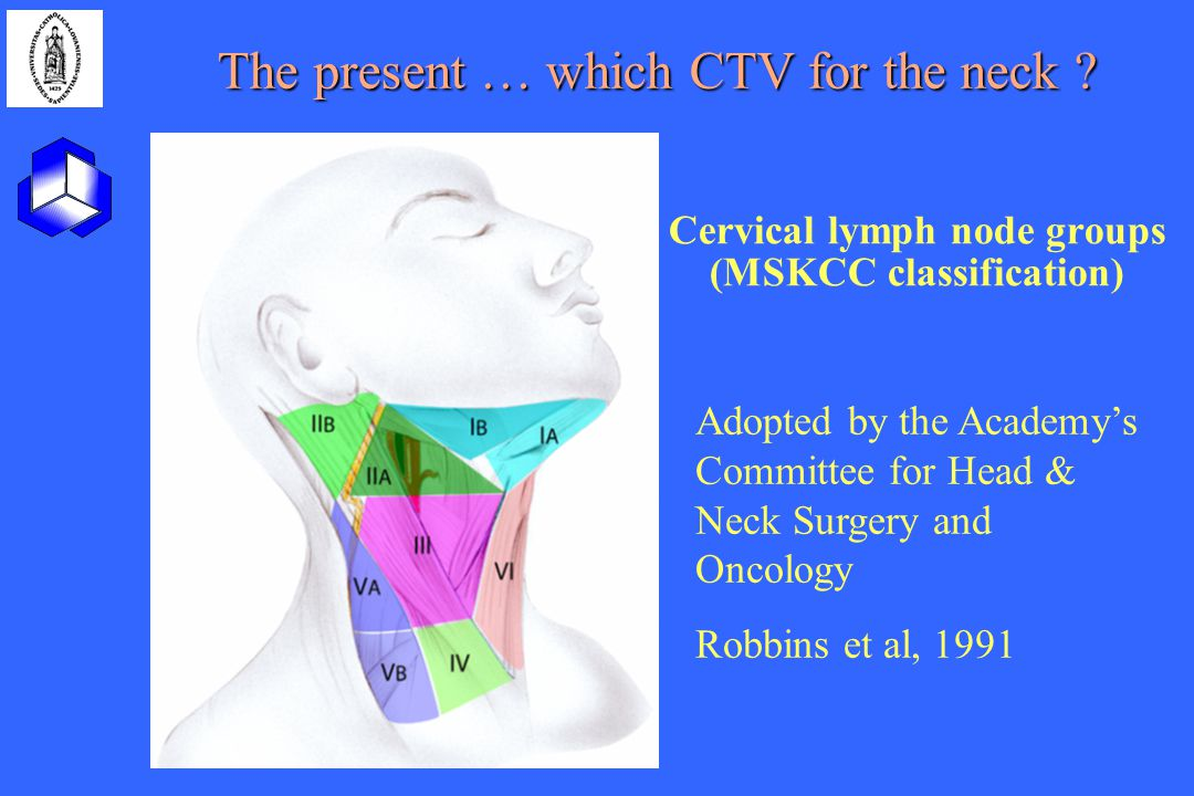 Cervical lymph node groups (MSKCC classification)