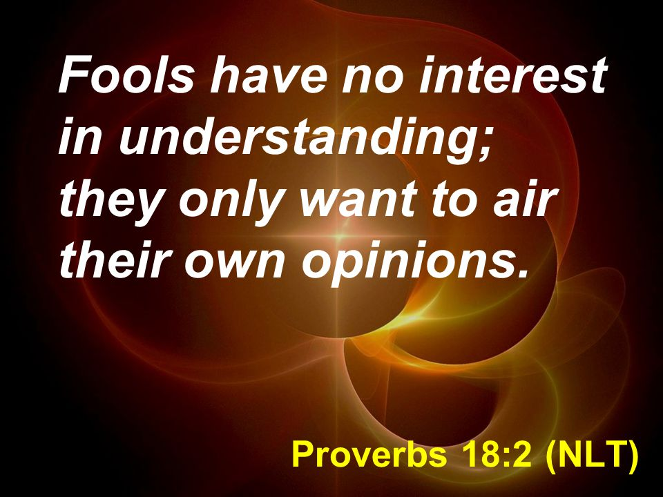 Fools have no interest in understanding; they only want to air their own opinions.