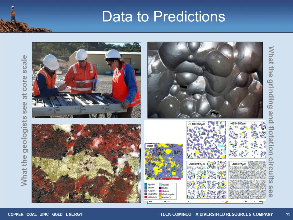 Data to Predictions