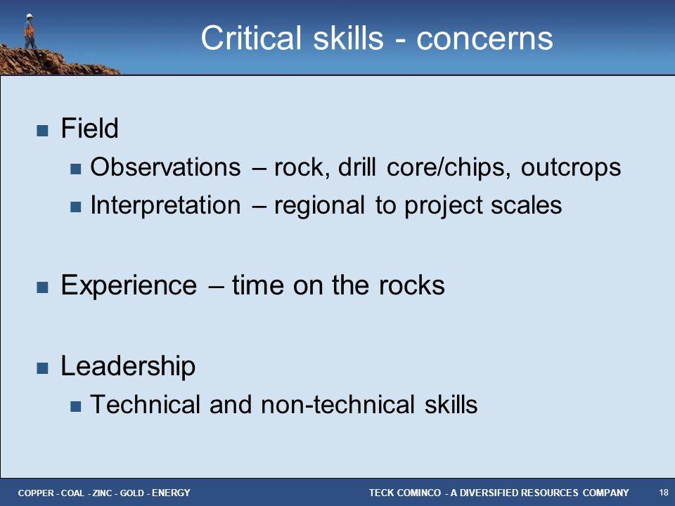 Critical skills - concerns