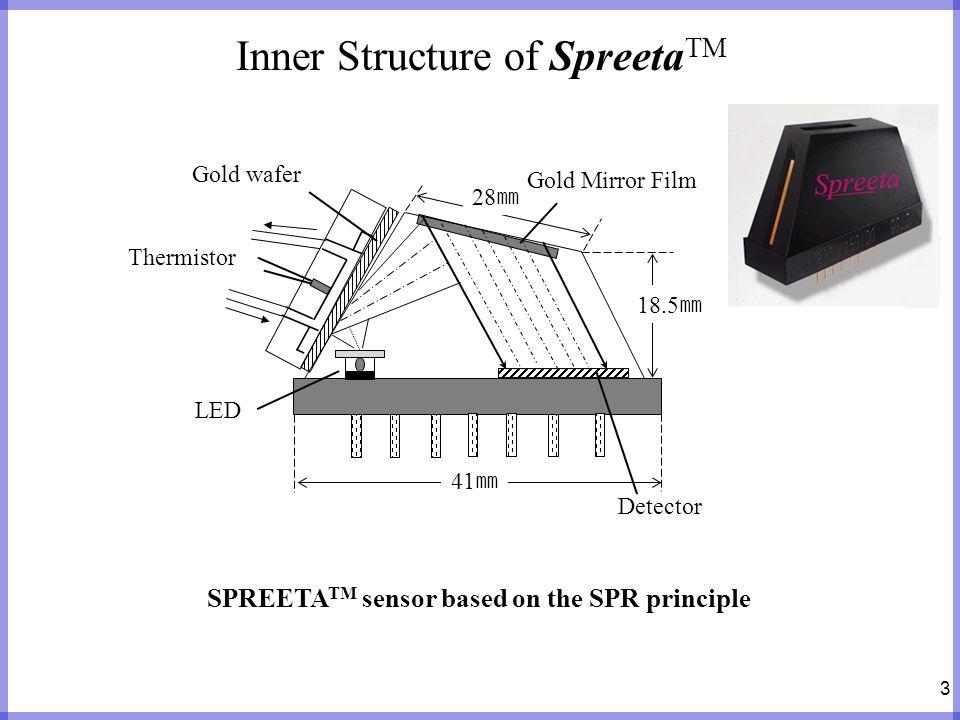 Inner Structure of SpreetaTM