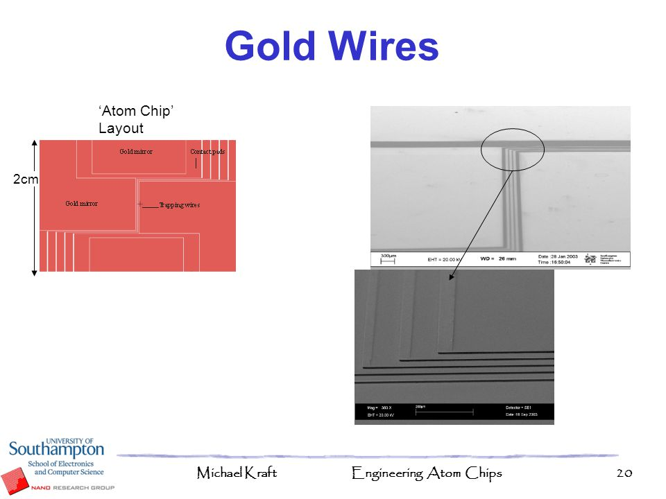 Gold Wires 'Atom Chip' Layout 2cm