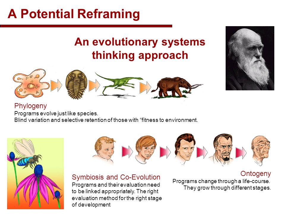 An evolutionary systems thinking approach