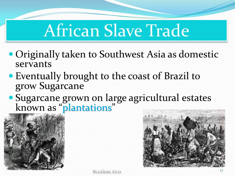 African Slave Trade Originally taken to Southwest Asia as domestic servants. Eventually brought to the coast of Brazil to grow Sugarcane.