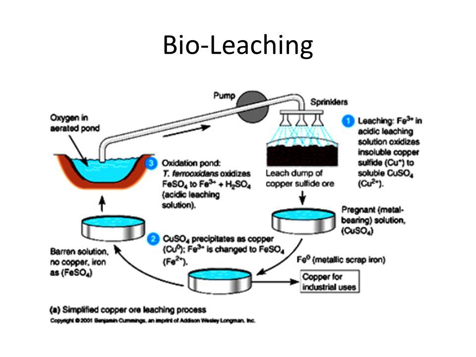 Bio-Leaching