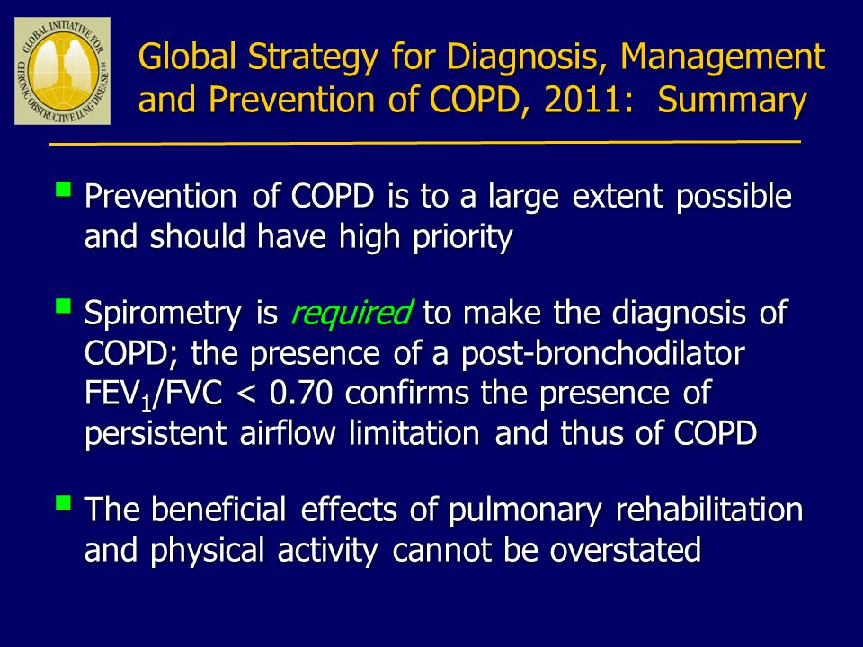 Global Strategy for Diagnosis, Management and Prevention of COPD, 2011: Summary
