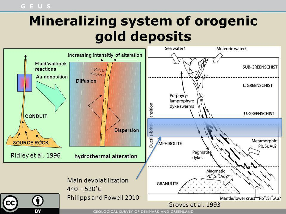 Mineralizing system of orogenic gold deposits