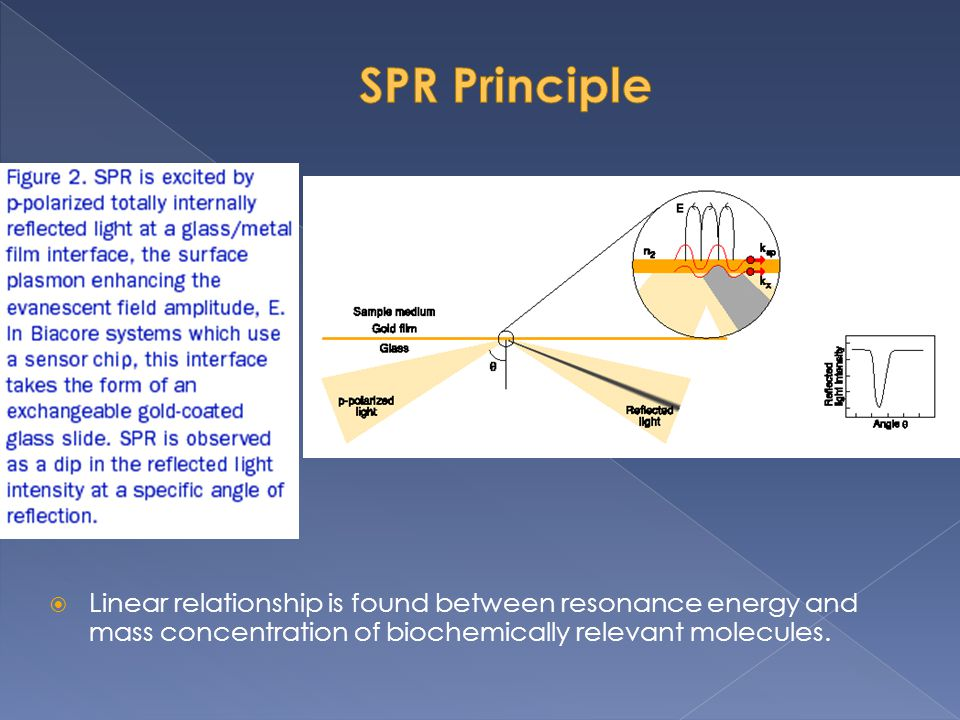 SPR Principle Linear relationship is found between resonance energy and mass concentration of biochemically relevant molecules.