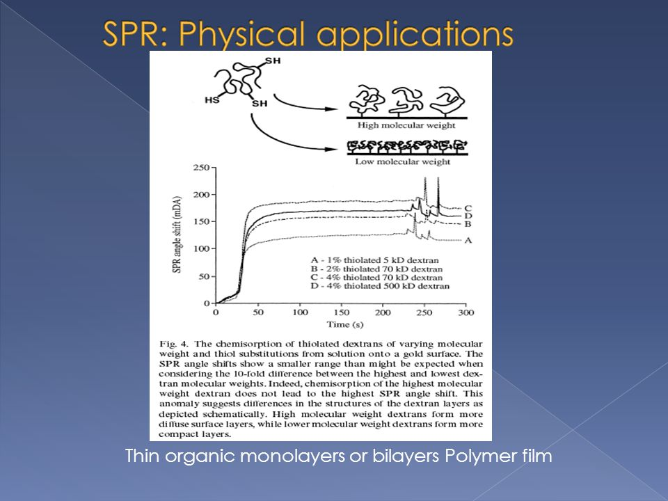 SPR: Physical applications