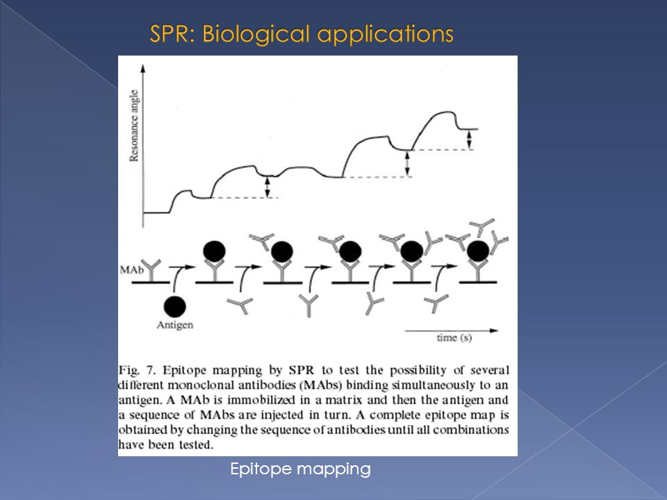 SPR: Biological applications