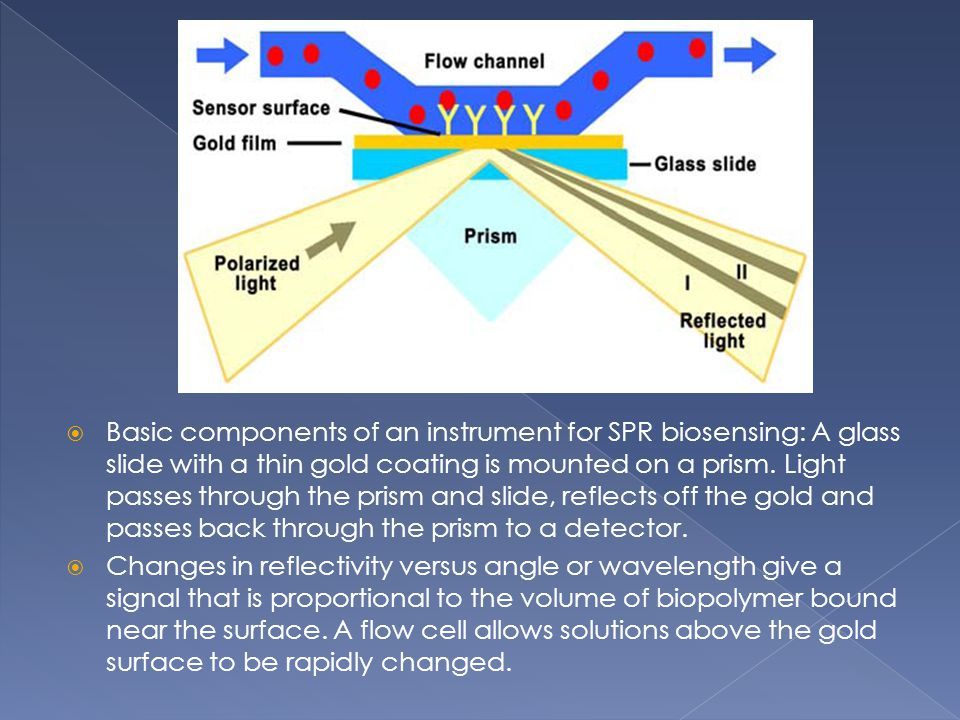 Basic components of an instrument for SPR biosensing: A glass slide with a thin gold coating is mounted on a prism. Light passes through the prism and slide, reflects off the gold and passes back through the prism to a detector.