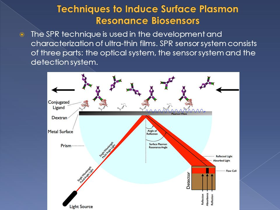 Techniques to Induce Surface Plasmon Resonance Biosensors