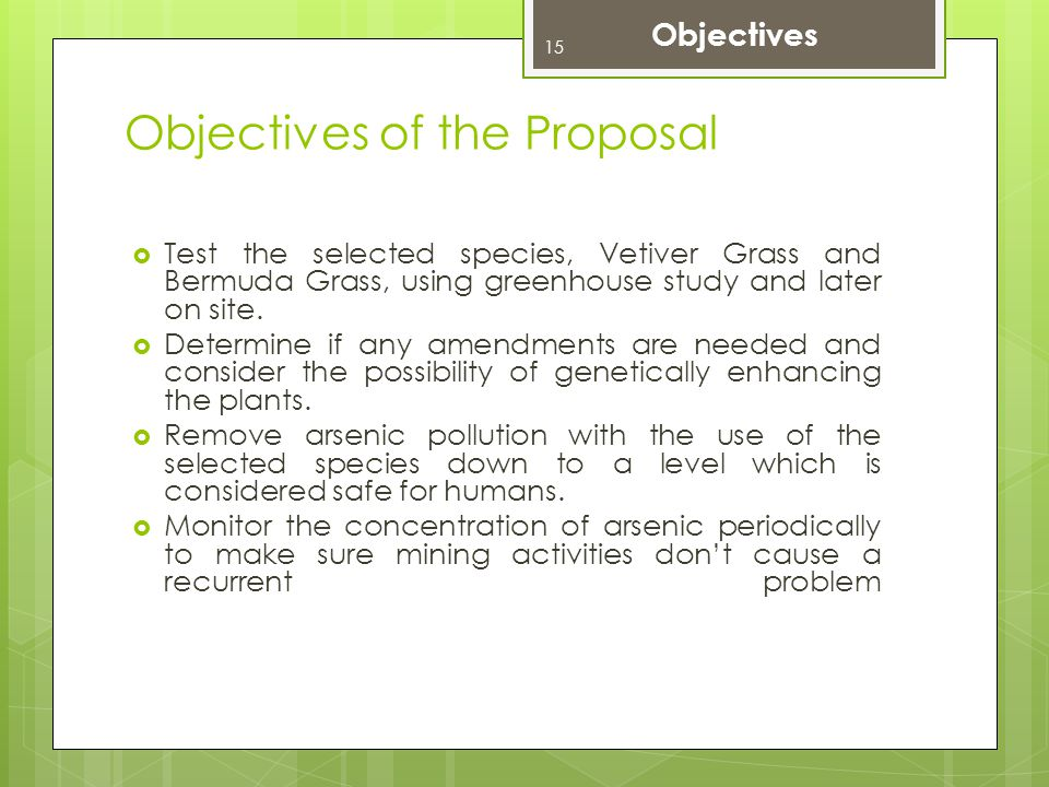 Objectives of the Proposal