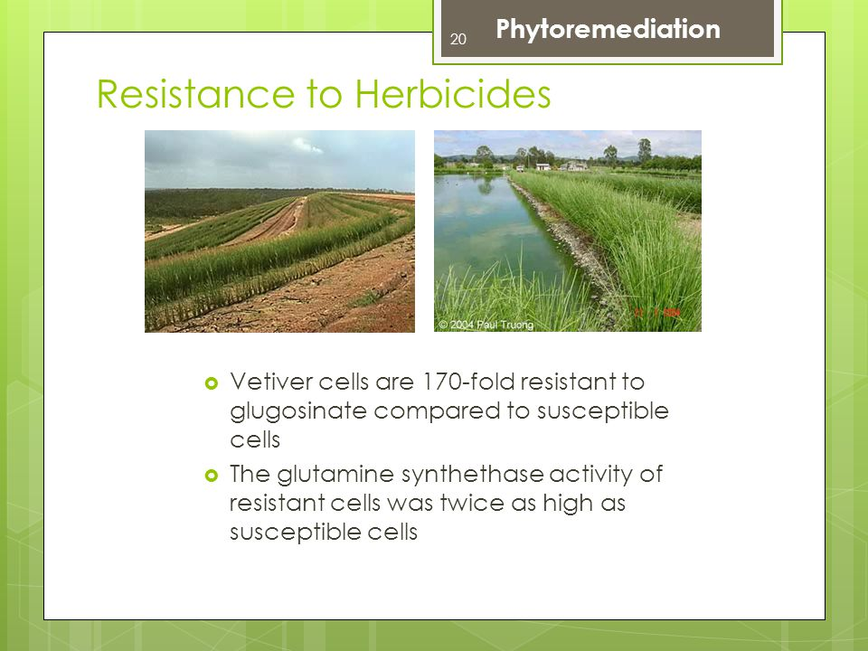 Resistance to Herbicides