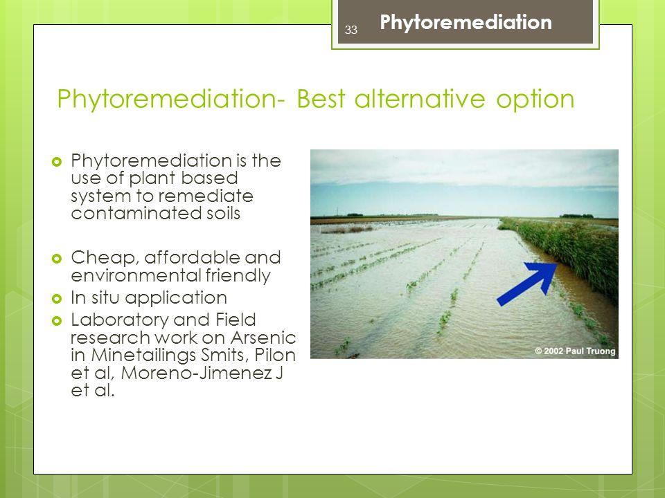 Phytoremediation- Best alternative option