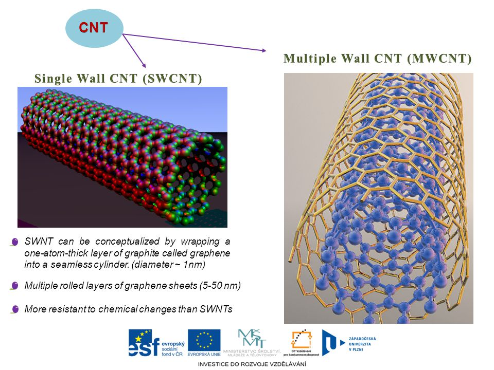 CNT Multiple Wall CNT (MWCNT) Single Wall CNT (SWCNT)