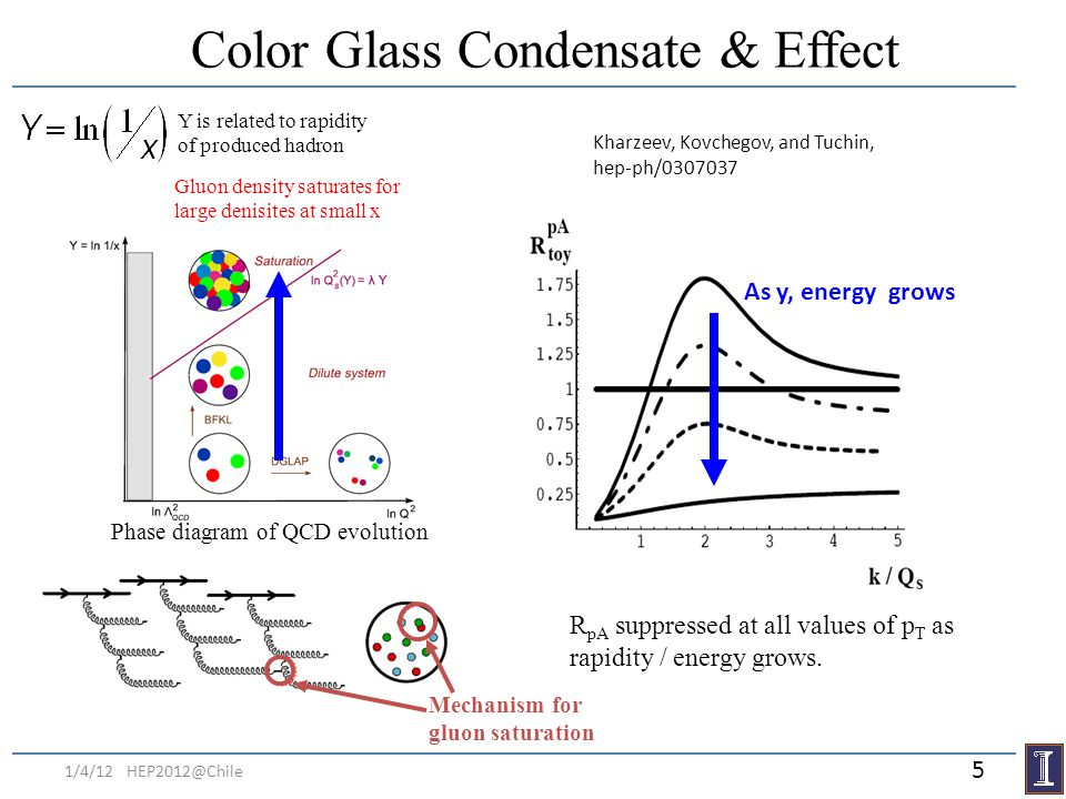 Color Glass Condensate & Effect