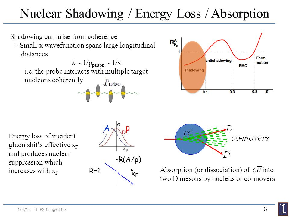 Nuclear Shadowing / Energy Loss / Absorption