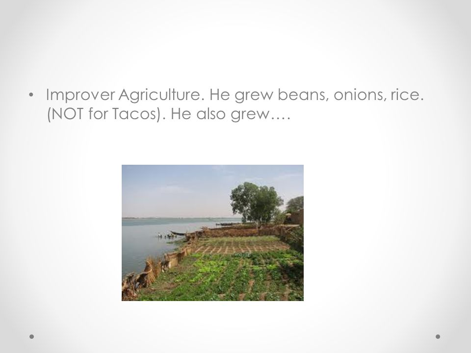 Improver Agriculture. He grew beans, onions, rice. (NOT for Tacos)
