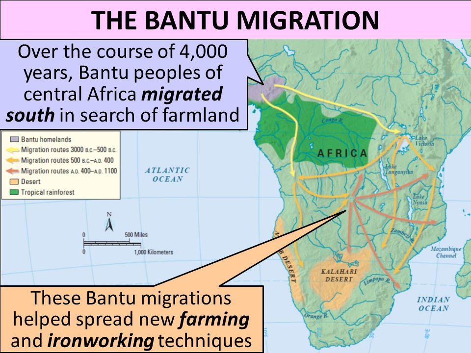 THE BANTU MIGRATION Over the course of 4,000 years, Bantu peoples of central Africa migrated south in search of farmland.