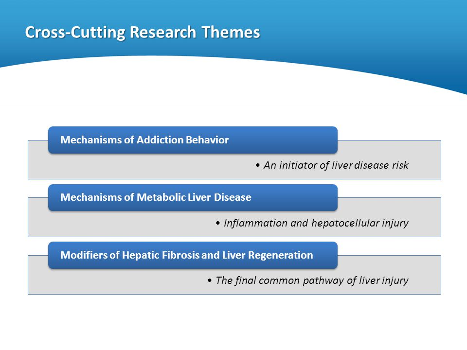 Cross-Cutting Research Themes